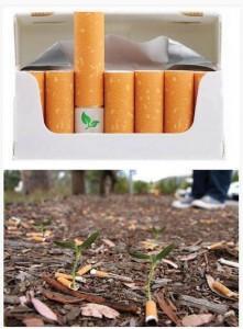 กำจัดก้นกรองบุหรี่
